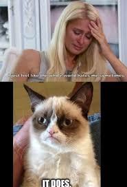 Paris Hilton Meme - paris hilton meme