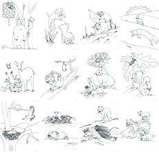 Forest Animal Coloring Pages Forest Animals Coloring Pages Inside Forest Animals Coloring Pages