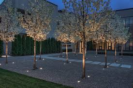 Outdoor Up Lighting For Trees 17 Inspiring Exles Of Exterior Uplighting On Houses Contemporist