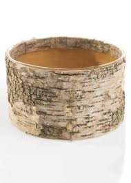 Birch Bark Vases Birch Vases Wooden Planters Afloral Com