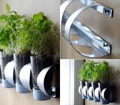 herbe cuisine mon beau jardin d herbes aromatiques dans la cuisine