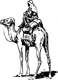 camel jockey wall decal sticker arabic mural collection camel jockey wall decal sticker arabic mural collection australia oman camel racing pakistan saudi arabia egypt bahrain jordan qatar uae