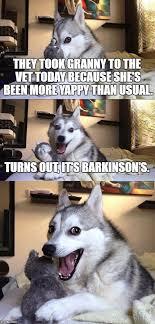 Dog At Vet Meme - bad pun dog meme imgflip