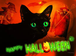 cat halloween wallpaper happy halloween cat hd desktop wallpaper widescreen high