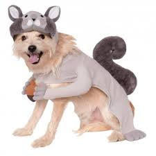 matching dog and owner halloween costumes 20 more pawsome halloween costume ideas for your dog anything