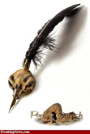 قلم يبهرك وقلم يقهرك images?q=tbn:ANd9GcS