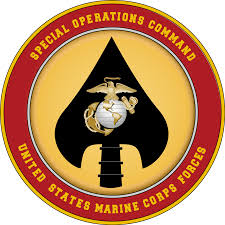 us marine corps critical skills operator cso u0026 special