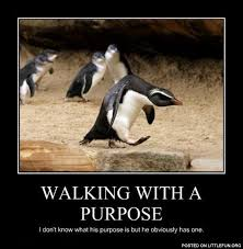 Walking Meme - littlefun walking with a purpose