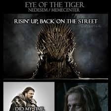 Eye Of The Tiger Meme - eye of the tiger by nedesem meme center