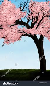 illustration japanese cherry blossom tree lush stock illustration