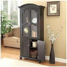 72 Black Cabinet with Glass Door at Big LotsGreat for either the