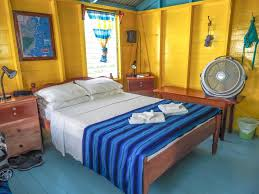 Seventeen Zebra Darling Bedroom Set 3 Days In Caye Caulker Belize How Slow Can You Go U2013 My