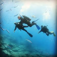 divemaster internship free with aqua marina tenerife canary islands