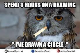 Art Owl Meme - owl memes