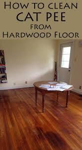 cat urine on laminate flooring