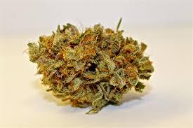 Craigslist Madras Or by Recreational Cannabis U0026 Medical Marijuana Dispensary Diamondtree