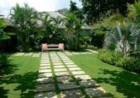 Landscaping Company In Miami by Lawn Maintenance Services Plant Perfection Landscaping Services