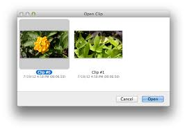 file format quicktime player using avchd files with quicktime player apple support