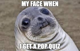 Meme Quiz - awkward moment sealion meme imgflip