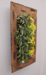 indoor vertical garden kit crowdbuild for