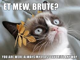 Funny Grumpy Cat Memes - 25 funny grumpy cat memes that will make you lol it s time to laugh