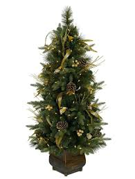 splendi pottedristmas tree real trees for salepotted