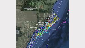 Shark Map Of The World by Great White Shark Nursery Off Hunter Coast Newcastle Herald