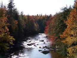 West Virginia rivers images These 15 beautiful rivers in west virginia are demanding your jpg