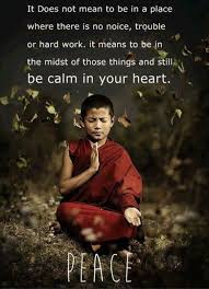 Zen Inspiration 15 Best Zen Quotes Images On Pinterest Zen Quotes Spirituality