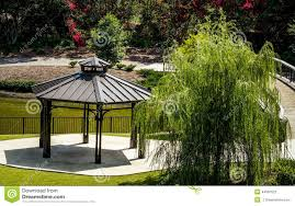 willow gazebo gazebo and weeping willow beside pond stock photo image of park
