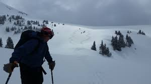 backcountry skiing paragon guides vail co powder skiing