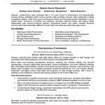 Free Sales Resume Templates Chronological Resume Template Chronological Resume Samples Writing