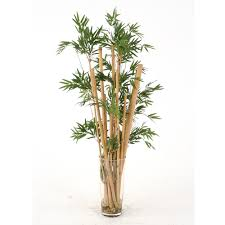 Floor Vase Flowers Waterlook Silk Leafy Bamboo In A Tall Glass Floor Vase Free