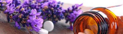 bindegewebsschwäche homöopathie homöopathie bei seborrhoischem ekzem ratgeber hautgesundheit