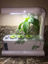 click u0026 grow indoor smart herb garden with 3 basil cartridges