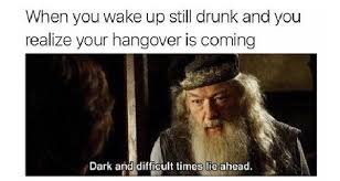Drunk Memes - hangover memes that capture the regret of drinking too much