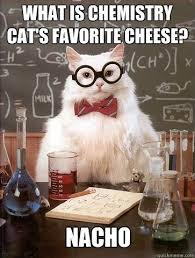 Cheese Meme - what is chemistry cat s favorite cheese cat meme cat planet