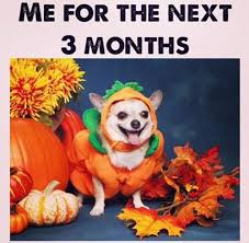 Pumpkin Spice Meme - fall memes for 2017 that will get you in the pumpkin spice latte