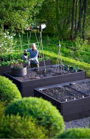 Garden Layout Front Yard Vegetable Garden Layout Ideas And Planning