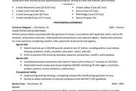 professional resume writers australia microeconomics homework