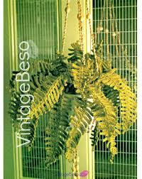 70s Decor by Instant Download Pdf Pattern Fern Plant Crochet Pattern 70s