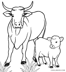 coloring pages of baby calf on images cow printable a cowboy