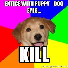 Puppy Dog Eyes Meme - images puppy dog eyes please meme