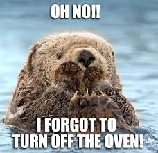 Sea Otter Meme - nothing but sea otters google
