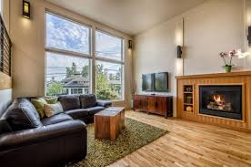 fake grass rug ideas for transitional living room with dark wood