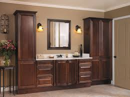12 bathroom cabinet design ideas opulent design ideas thebusylife us