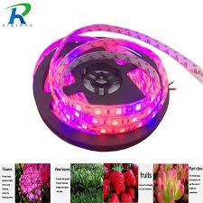 12v dc led grow lights riri won 5m led plant grow strip grow light waterproof 5050 dc 12v