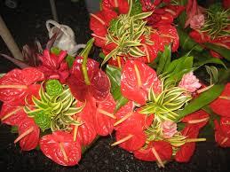 Hilo Flowers - hawaii five adventures u2013 hilo u0027s open air market marybeth bond u0027s blog
