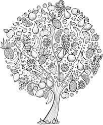 coloring pages for adults tree fruit tree coloring sheets coloring pages funny coloring