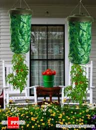 Upside Down Tomato Planter by 2 X Upside Down Tomato Planters Online Shopping Shopping